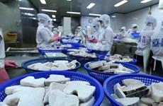 Destaca oficina de cooperación de Japón ritmo de crecimiento sólido de Vietnam