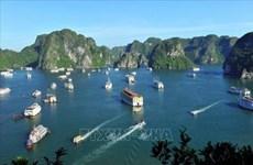 Proyectan mejorar la calidad de los servicios turísticos en ciudad vietnamita de Ha Long