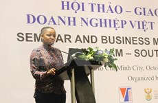 Buscan empresas sudafricanas oportunidad de cooperación con Vietnam