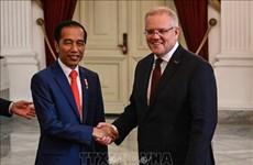 Acelera Australia aprobación del TLC con Indonesia