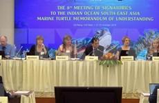 Vietnam se une a los esfuerzos mundiales para proteger a las tortugas marinas