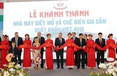 Inauguran moderna planta de procesamiento de aves de corral en Thanh Hoa