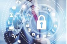 Centro de respuesta a emergencias de ciberseguridad de Vietnam entrará en operación en noviembre