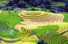 Destacan a Vietnam como destino impresionante en Feria Internacional de Turismo y Viajes de Montreal