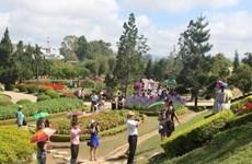 Festival de Flores de Da Lat incluirá amplia gama de actividades