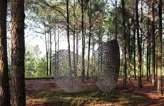 Resaltan artistas extranjeros en Vinh Phuc la armonía entre la naturaleza y los seres humanos