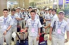 Llama Organización Internacional del Trabajo a que Vietnam garantice seguridad de trabajadores migrantes