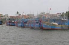 Enfrentarán provincias centrovietnamitas la quinta tormenta de la temporada