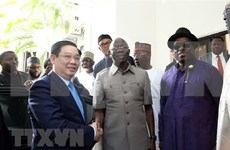 Vietnam reitera apoyo a Nigeria en desarrollo de agricultura de alta tecnología