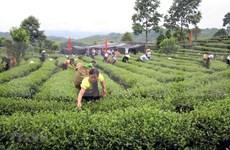 Analizan diputados de Vietnam plan de desarrollo de etnias minoritarias