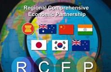 Asiste Vietnam a reunión ministerial preparatoria del RCEP