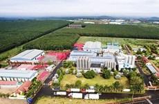 Crecen 13,7 por ciento ventas minoristas en provincia vietnamita de Dak Lak