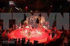 Celebrarán Festival Internacional de Circo en provincia vietnamita de Quang Ninh