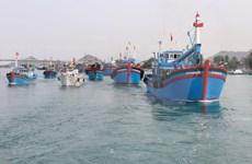 Revisa Comisión Europea implementación de medidas contra la pesca ilegal en Vietnam