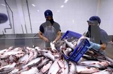 Aprueba Estados Unidos las importaciones de pescados sin escamas de Vietnam
