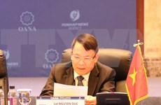 Urge la VNA a reforzar medidas para luchar contra las noticias falsas