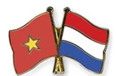 Dispuesta organización no gubernamental neerlandesa a respaldar a provincia vietnamita