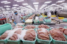 Reconocimiento por  EE.UU. del control fitosanitario de Vietnam al pescado Tra  impulsará  su exportación