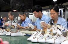 Prevén en Vietnam alto crecimiento de exportaciones de cuero y calzado