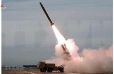 Emite Vietnam decreto gubernamental para reforzar lucha contra proliferación de armas
