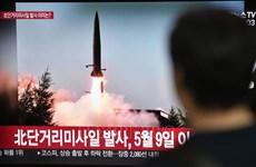 Debaten Indonesia y Corea del Sur plan para la compraventa de armas