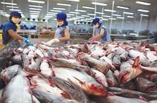 Suben las exportaciones del pescado Tra vietnamita a Malasia