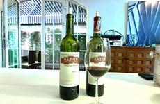 Ambiciona Argentina extender mercado vitivinícola en Vietnam