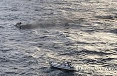 Apoya Embajada de Vietnam en Corea del Sur a familias de pescadores desaparecidos