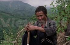 Presentan películas vietnamitas en Festival Internacional de Cine de Singapur