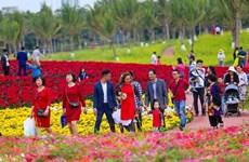 Celebrarán por primera vez en Ciudad Ho Chi Minh el Festival del Tet