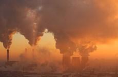Vietnam entre países más afectados por cambio climático