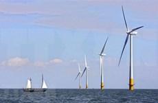 Valoran en Vietnam desarrollo del mayor proyecto sobre energía eólica marina