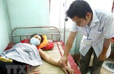Hanoi mantiene en control epidemia de dengue