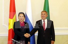 Muestran expertos rusos optimismo sobre los lazos entre Vietnam y Rusia