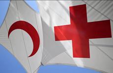 Resaltan participación activa de Vietnam en movimiento de la Cruz Roja