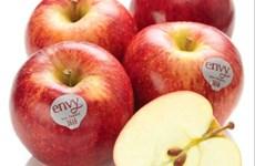Vietnam, quinto mayor consumidor de manzanas estadounidenses