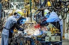 Banco Mundial predice un crecimiento del 6,8% del PIB de Vietnam en 2019