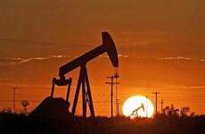 Vietnam ingresa fondo multimillonario por exportaciones petroleras en 11 meses