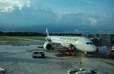 Aerolínea neozelandesa lanza ruta entre Vietnam y ciudad de Christchurch