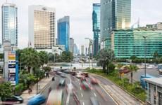 Estrechan Indonesia y EAU cooperación multifacética