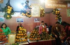 Inauguran en Hanoi Semana de naranja de provincia vietnamita de Ha Giang