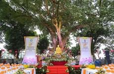 Conmemoran 60 aniversario del obsequio de árbol Bodhi de presidente indio a Vietnam