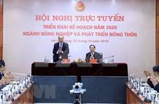 Aspira Vietnam a figurar entre los 10 mayores exportadores mundiales de productos agrícolas