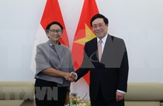 Ratifica Indonesia apoyo a Vietnam como presidente de ASEAN en 2020