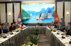 Celebran Vietnam y Laos la sexta Consulta Política entre las dos Cancillerías