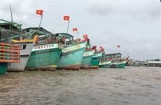 Avanza Vietnam en actividades contra la pesca ilegal