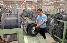Recolecta Vietnam opiniones para perfeccionar políticas favorables al desarrollo de aldeas artesanales