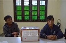 Detectan a narcotraficantes en área fronteriza en Vietnam