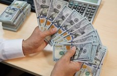 Registra Vietnam reserva de divisas multimillonaria
