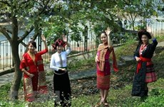 Efectúan en Hanoi numerosas fiestas de minorías étnicas